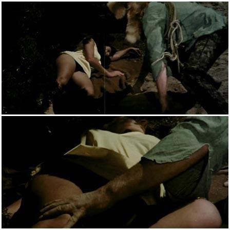 The Bushwhacker groped a sleeping woman