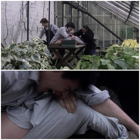 Сlassmates raped a guy in a flower greenhouse